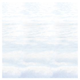 Veggdekorasjon, Snowscape