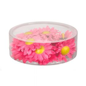 Dekorasjons Blomster Zinnia Rosa 20 stk