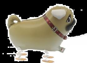 Folieballong gående Pug, 55 cm